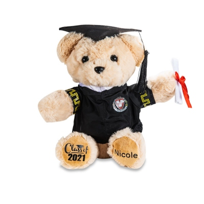Custom-built Graduation Teddy Bear with School Badge