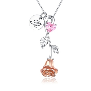 Rose Heart Birthstone Necklace With A Initial Round Tag